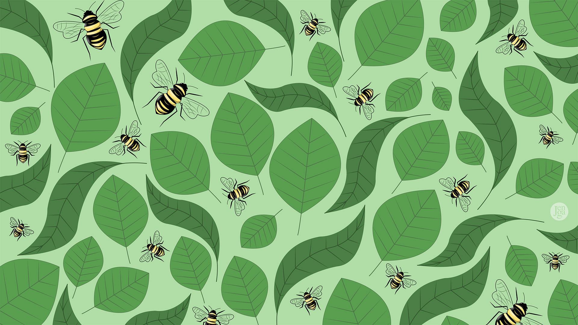 Taustakuva, jossa on hyönteisiä.